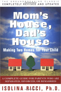 moms house dads house - parenting book